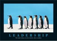 Liderlik penguen
